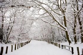 Winter snow, Kent, England, UK
